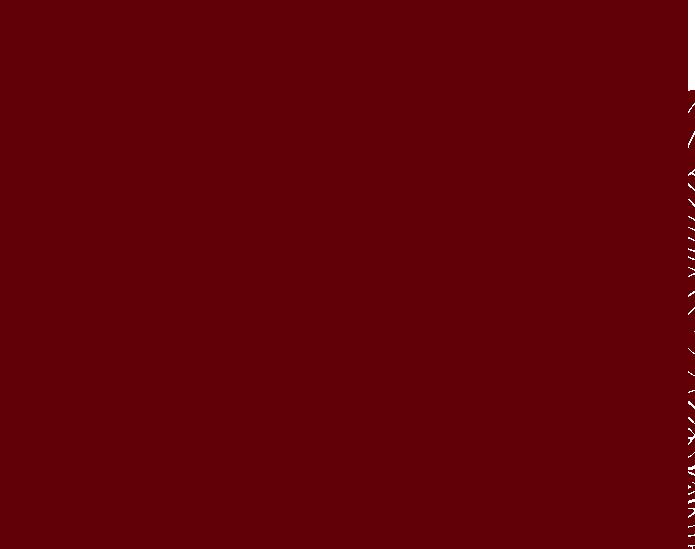 Horóscopo Chino 2017 El Gallo