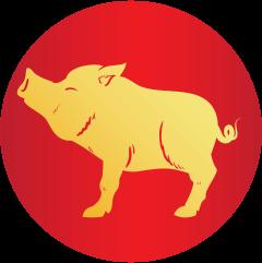 Horóscopo Horóscopo Chino 2019