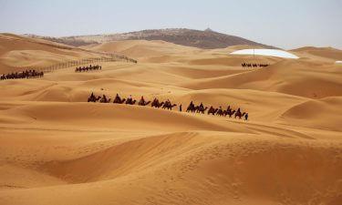 Tarot Marroquí de Fez
