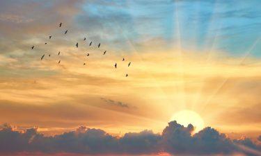 Limpieza energética con el Sol en Virgo