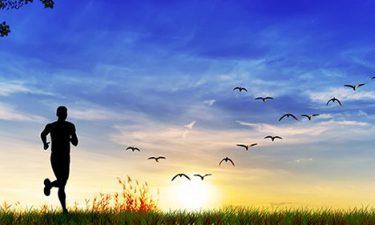 Los beneficios de la Naturaleza sobre nuestra atención