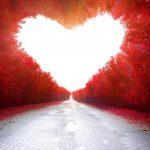 El camino hacia el amor en once pasos