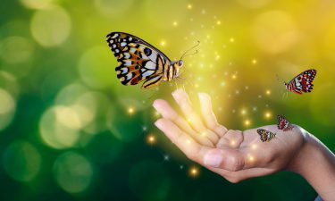 Las tres leyes para ser más feliz a través del desapego