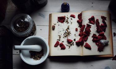 ¿Qué nos aporta la aromaterapia?