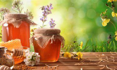 Conoce la miel de abeja y sus beneficios