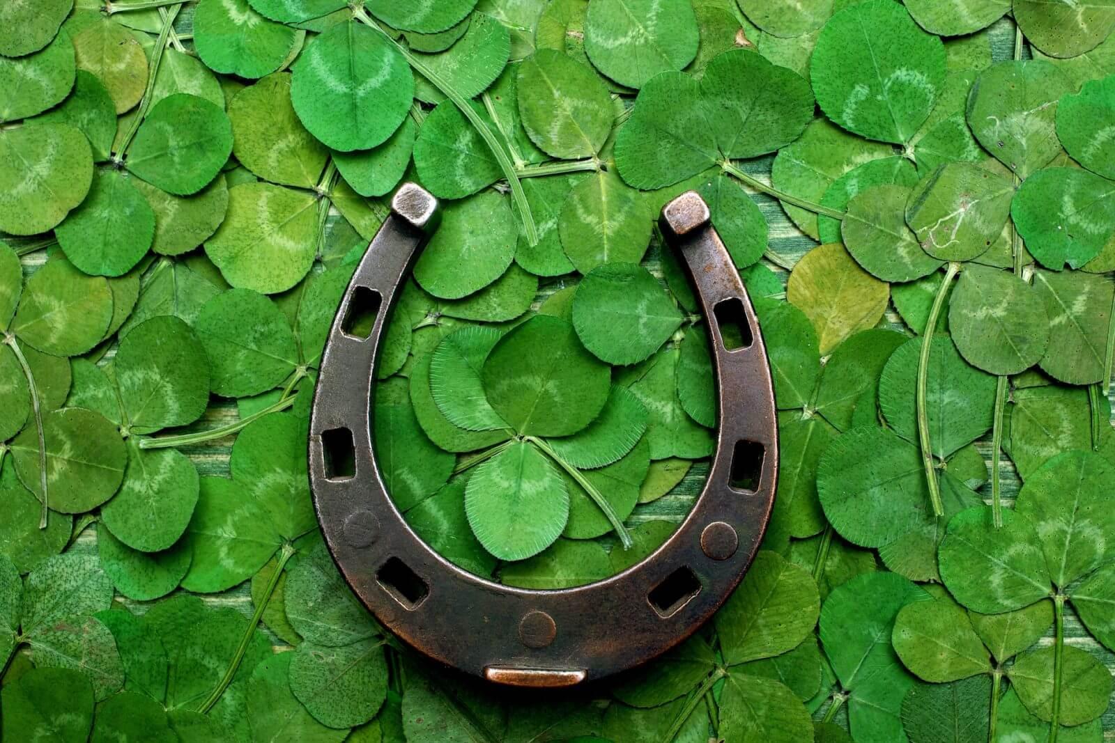 Los amuletos de la suerte para tu hogar