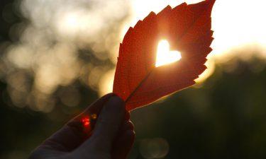 ¿Qué es la Terapia del Rebirthing?