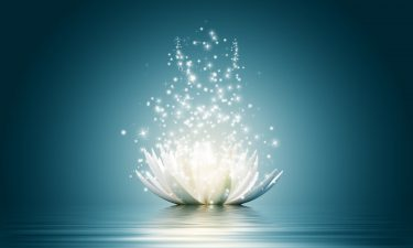 El profundo significado de la Flor de Loto