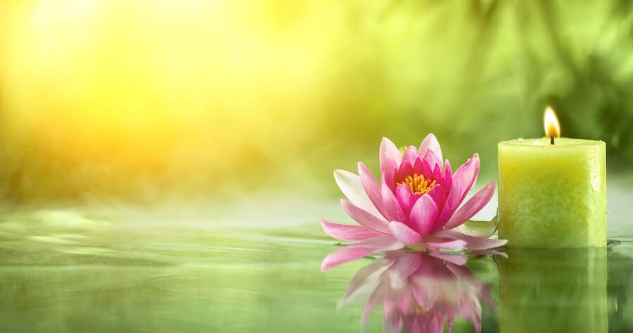flor de loto como simbolo sagrado