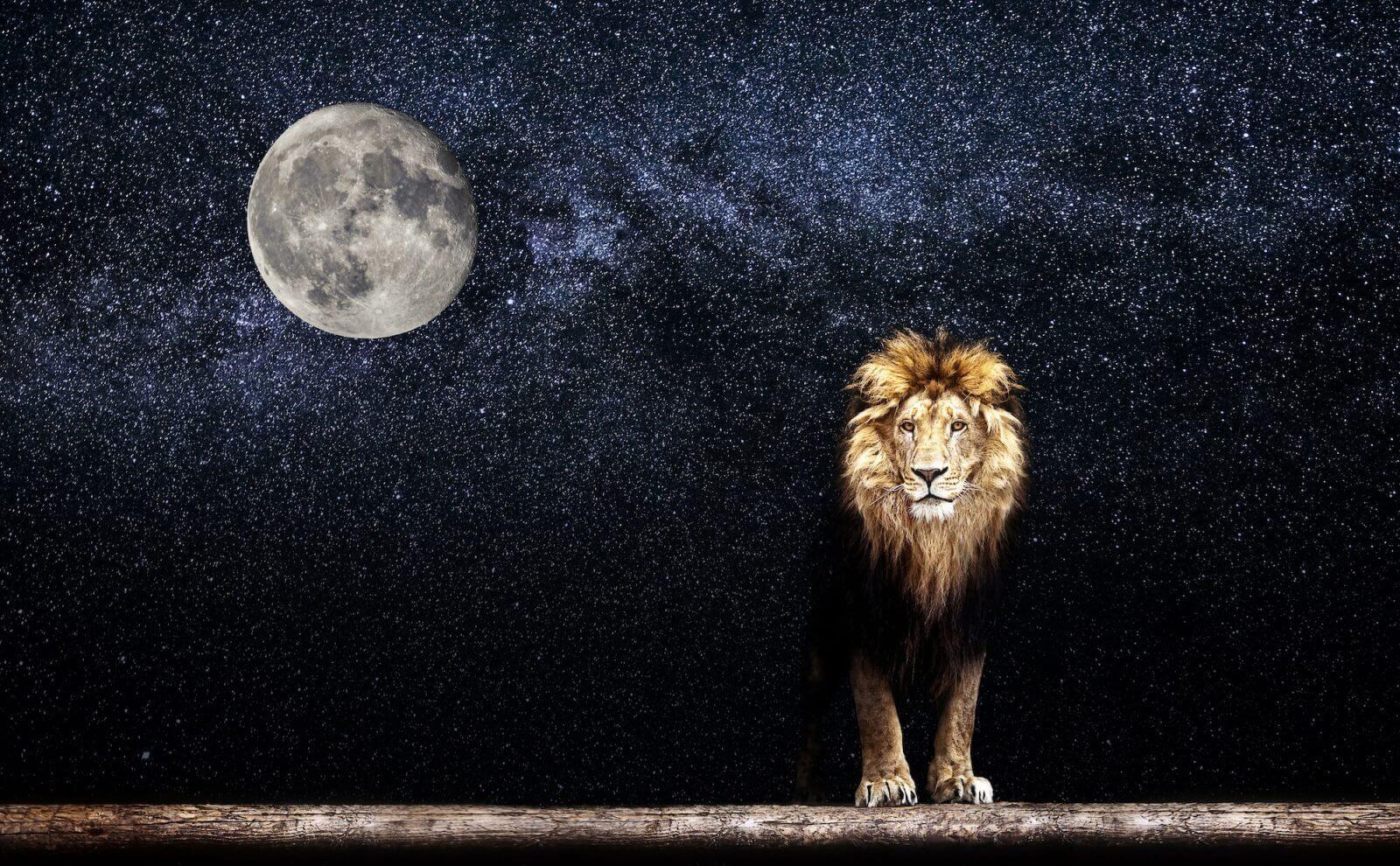 Resultado de imagen para luna nueva en leo