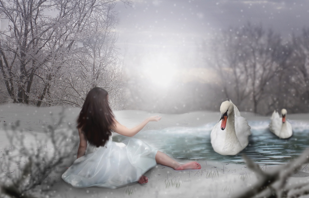 horóscopo persa el cisne
