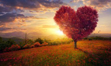 Horóscopo Amor de la semana: Del 8 al 14 de Abril