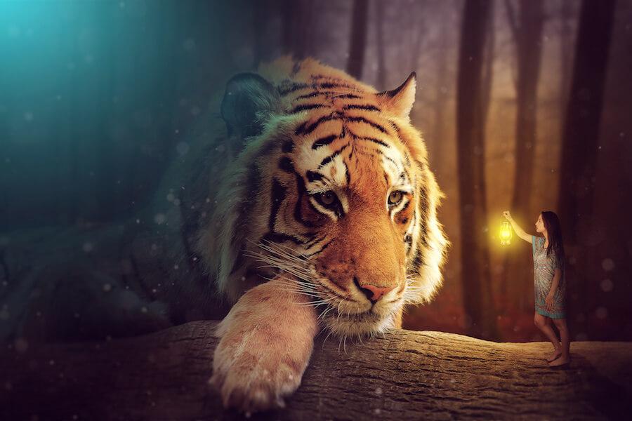 el espíritu animal de aries