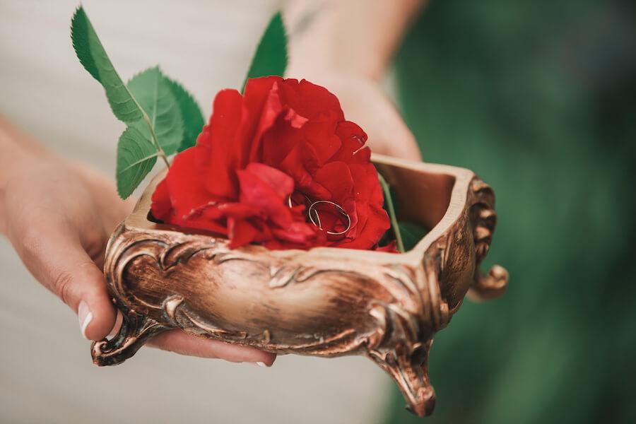 valora a tu rosa