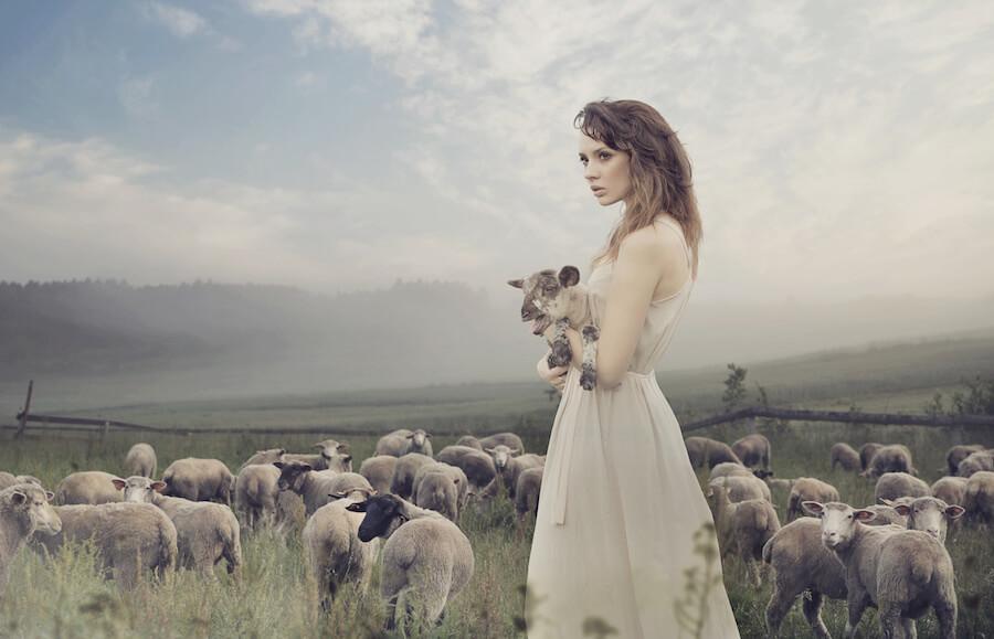 ser oveja en la vida